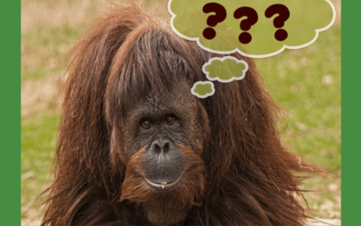 You Need to Ask this Question About Your Customers
